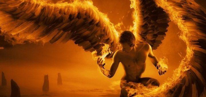 da imam krila sastav