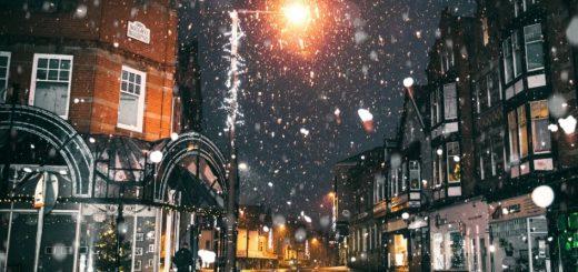 Zima u gradu sastav